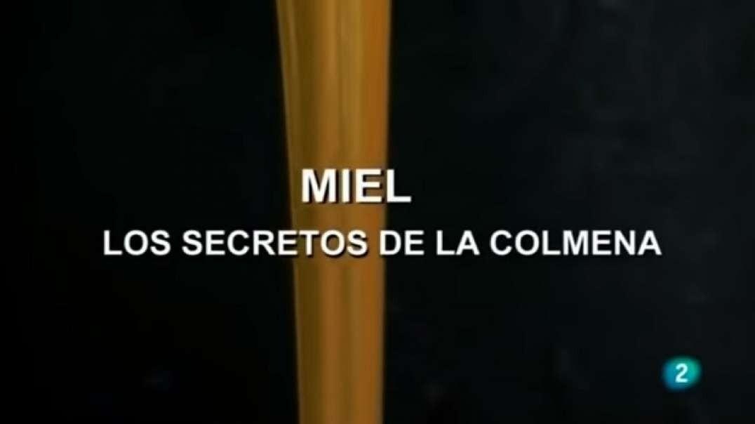 La Miel, los Secretos de la Colmena | Documental