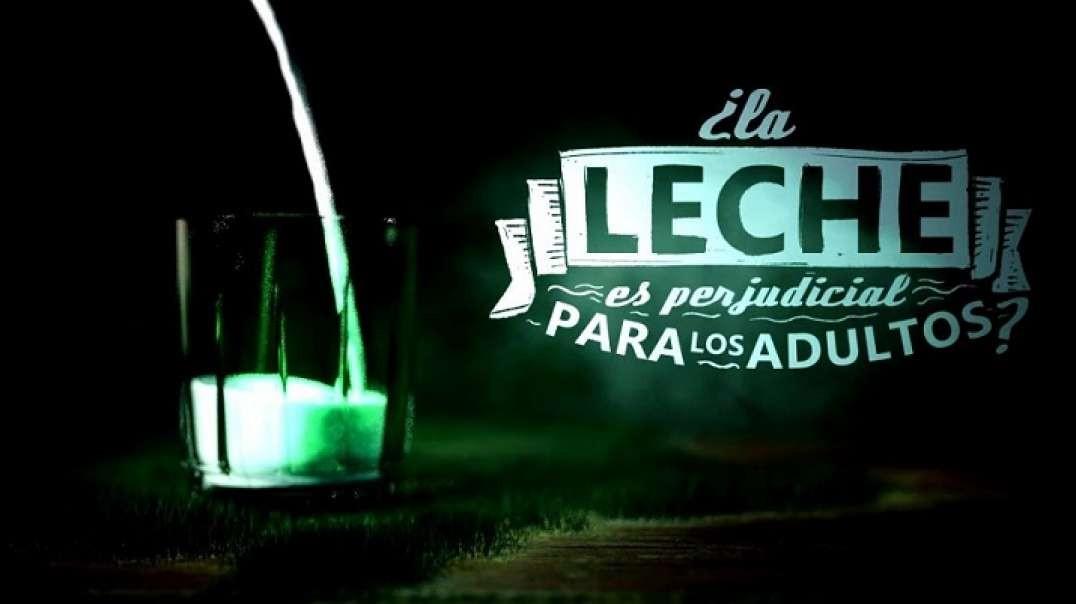 La Noche Tematica | La Leche: Hechos y Creencias