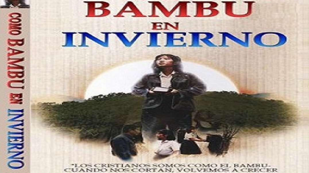 Bambu En Invierno - Pelicula