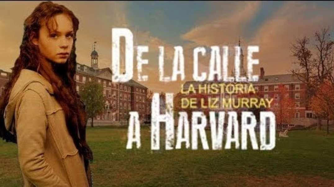 De la Calle a Harvard | Pelicula de la vida real - Superacion